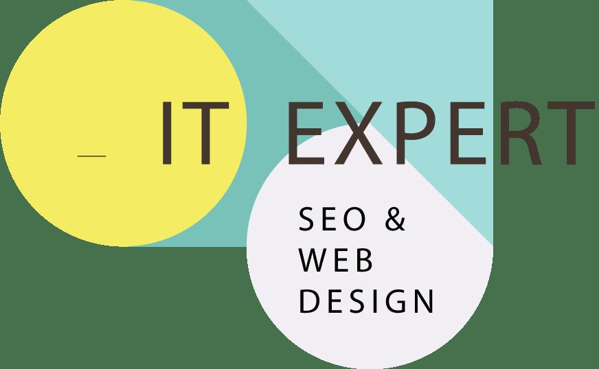 IT Expert Logo